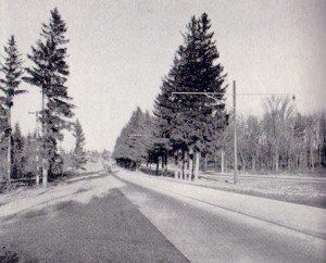 This image is of Middle Road which eventually became the QEW.  A usable photo of Lake Shore Road circa 1935 was not available.